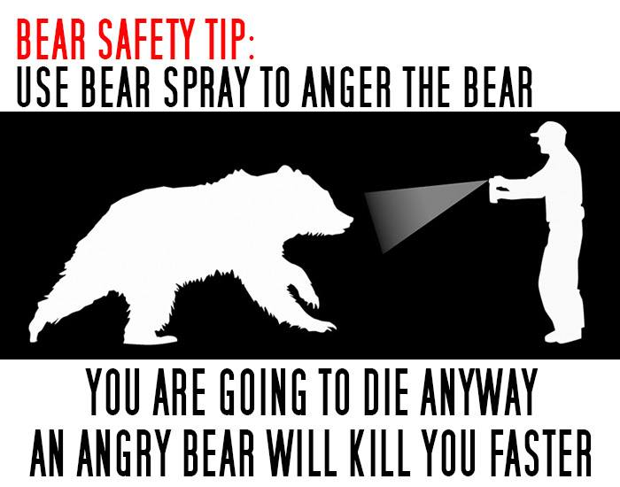 bear spray origonal