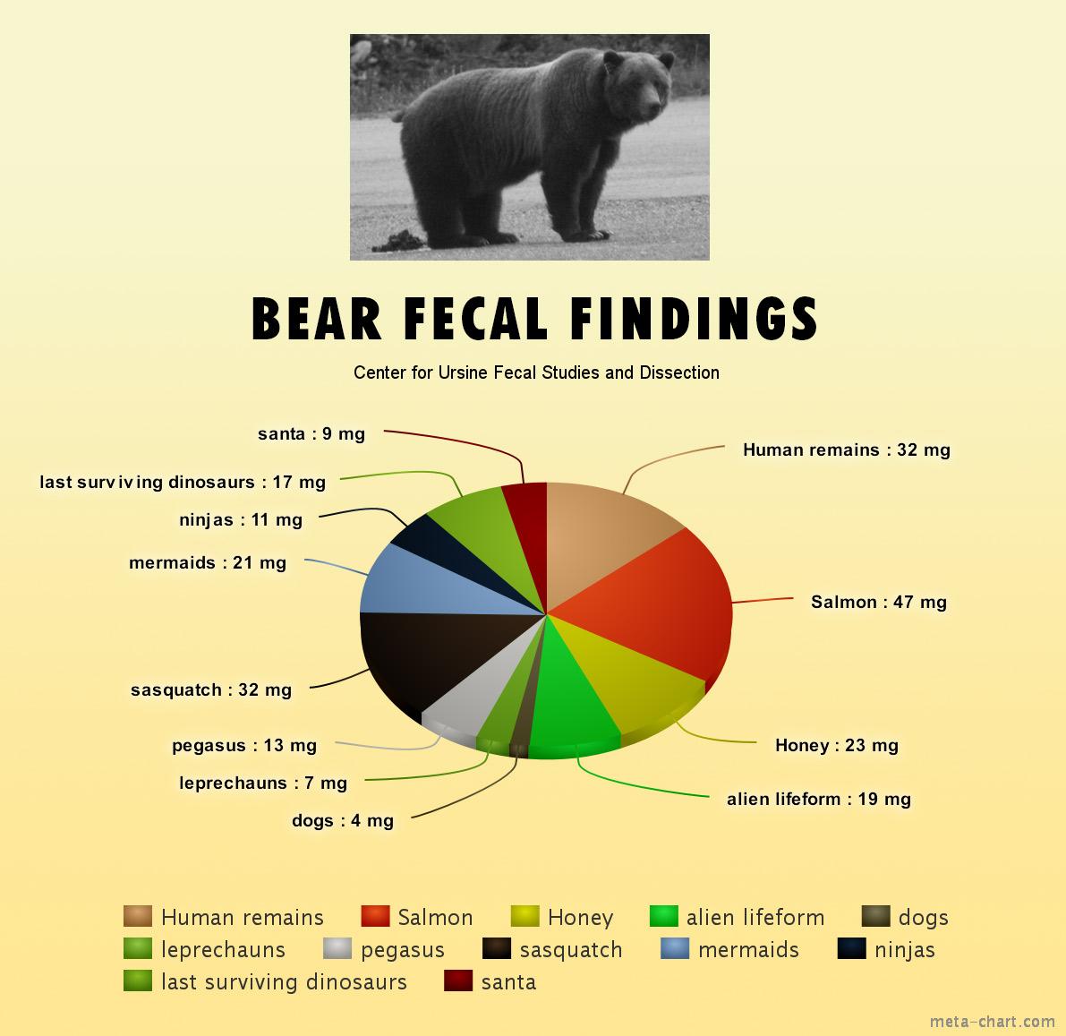bearpoop-chart