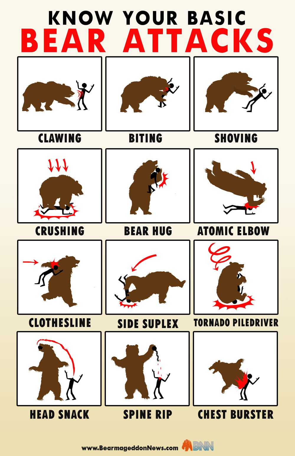 bear-attacks