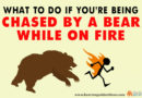 What To Do If You're Being Chased By a Bear While On Fire