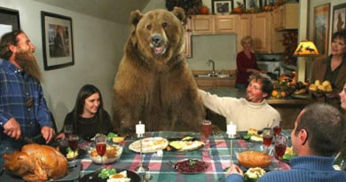 8 Tips for Dealing With a Bear at Thanksgiving