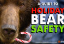 Decrease Your Chance of a Christmas Bear Attack to 83%