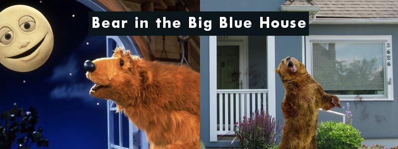 famous-bearinbluehouse