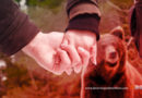 9 Valentine's Day Tips For More Romance and Less Bear Attacks