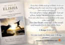 The Prayer of Elisha: Claiming God's Bear Vengeance for Your Own Life