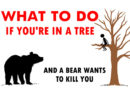 Bear Got You Up a Tree? Do This
