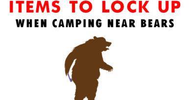 Keep All Items Bear-Safe