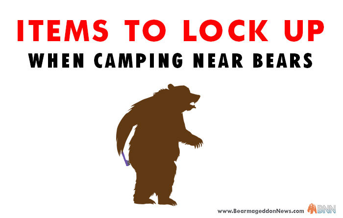 Keep All Items Bear-Safe