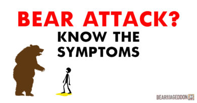 BEAR ATTACKS: Know the Symptoms