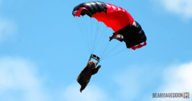 Amazing: Bear Learns To Skydive So He Can Elbow Drop Elk From Plane