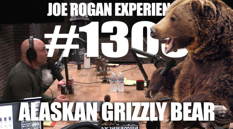 Joe Rogan Interviews 1,600 Pound Alaskan Grizzly Bear